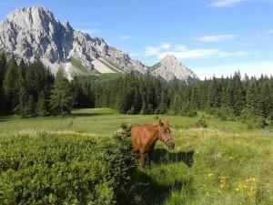 Alla scoperta del Friuli