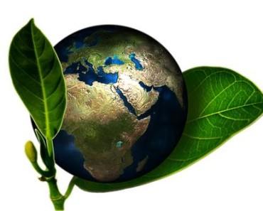 vivere in maniera ecologica