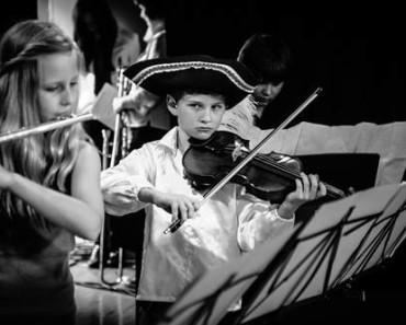 Il violino perfetto